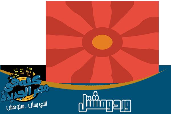 محلات ورد ومشتل في مصر الجديدة