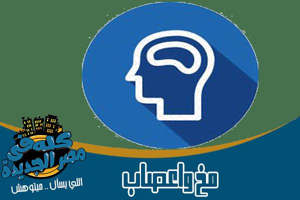 أطباء ودكتور مخ وعصاب في مصر الجديدة