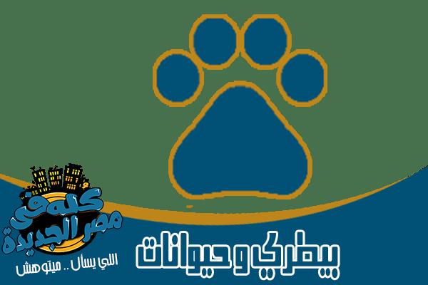 اطباء ودكتور بيطرى في مصر الجديدة